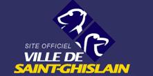 Saint-Ghislain: Faites appel au Taxi Loisirs