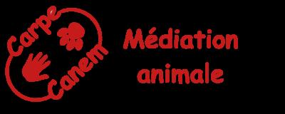 (Carpe Canem ASBL - Médiation animale à destination des personnes fragilisées et des enfants)