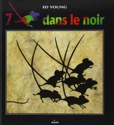 7 souris dans le noir