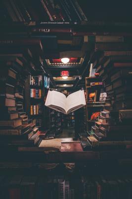 Livres adaptés, une innovation nécessaire !