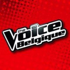 Lou Boland, un artiste accompli ce mardi à The Voice Belgique
